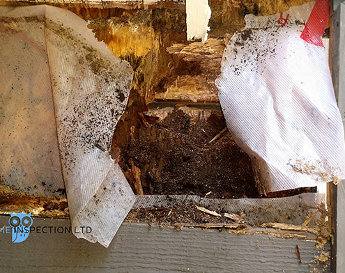 Rotted wood framing caused by a missing kick out flashing