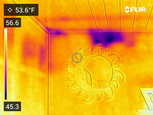 Thermal Imaging Comparison Photo